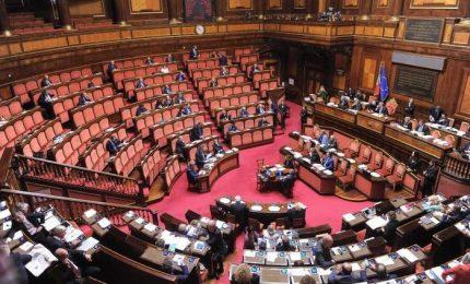 Al Senato il gruppo misto ha superato numericamente Italia Viva e Fratelli d'Italia! E se i grillini si divideranno...