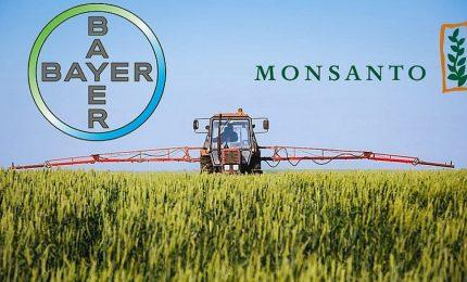 Così, per curiosità: che rapporti ci sono tra l'amministrazione Biden e l'accoppiata Bayer-Monsanto?