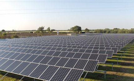 Sei un agricoltore siciliano in crisi? Affitta i tuoi terreni: impianti fotovoltaici per 30 anni!/ MATTINALE 505