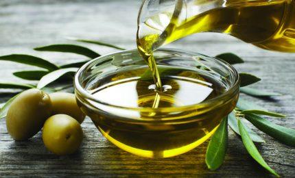 Il vero olio d'oliva extra vergine non può essere acquistato a meno di 3 euro a bottiglia!