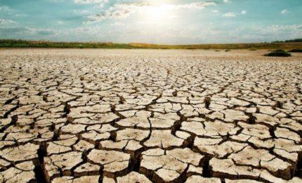 """Attiva Sicilia al Governo Musumeci: """"Bloccare le richieste di impianti fotovoltaici sui terreni agricoli della Sicilia"""""""