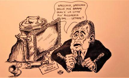 La specchiera di Palermo simbolo della vitalità 'panormosaura' nella vignetta di Guido Buccellato