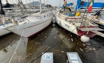Acqua stagnante e liquami alla Cala. Comune e Autorità portuale sanno qualcosa? 10 terribili foto/ PALERMO-CITTA' 90