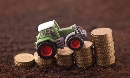 Contributi previdenziali in agricoltura: sospesi i pagamenti in attesa di calcolare la quota di esonero
