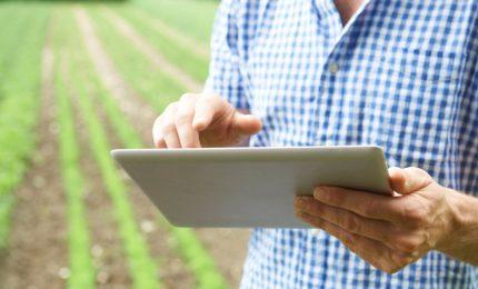 Il 'regalo' del Governo Draghi agli agricoltori: gli oneri contributivi oggetto di sgravi dovranno essere pagati per intero