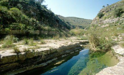 La Regione siciliana ha autorizzato oltre 100 ettari di pannelli fotovoltaici nel Parco Ibleo. Siamo alla follia!/ MATTINALE 492