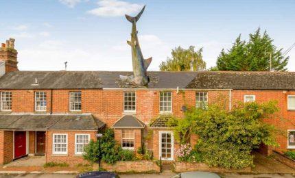 Lo squalo di Oxford, una scultura che simboleggia il pericolo nucleare