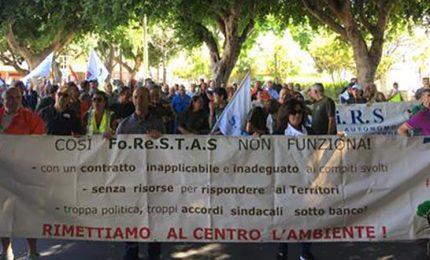 Sì della Corte dei Conti alla stabilizzazione dei forestali in Sardegna. Adesso tocca alla Sicilia