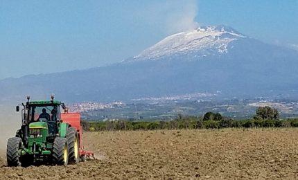 Piana di Catania con poca acqua per l'agricoltura. La CIA segnala approssimazione e disorganizzazione