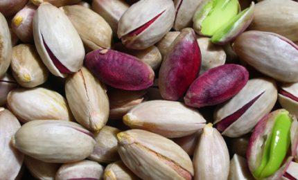 Ad Aosta bloccati 23 tonnellate di pistacchi senza provenienza diretti a Bronte. Complimenti!