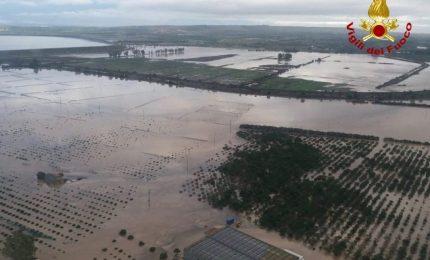 Riflettendo su un post di Ernesto Abate (Sifus): dopo gli incendi dei boschi le esondazioni dei corsi d'acqua provocheranno altri danni?