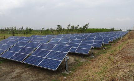 Ars, Valentina Palmeri, Claudio Fava e Giampiero Trizzino all'attacco: no ai pannelli fotovoltaici al posto dell'agricoltura/ SERALE