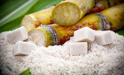 Schizza all'insù il prezzo dello zucchero a causa delle gelate in Brasile. Annibale Chiriaco racconta lo zucchero in Sicilia e a Palermo